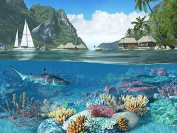 Caribbean Islands 3D Screensaver And Animated Wallpaper 1.1 Build 2
